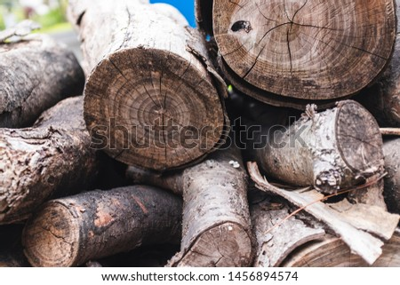 A shot of stacked stacked firewood. #1456894574