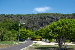A shot of the Bluff in Cayman Brac. This image is taken from the northeast of the island looking up at the limestone formation that is decorated with lush green trees and foliage