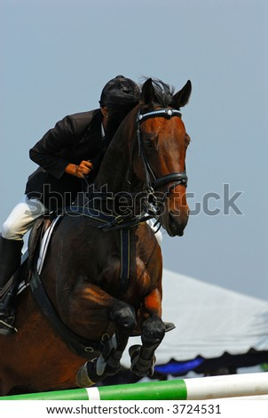 A show jump horse trying to overcome hurdles at Premiercup Equestrian event in Putrajaya, Malaysia