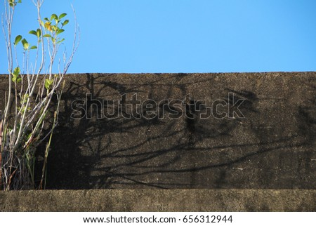 a shrub and a  cement wall under blue sky. sketchy background and texture for design.  #656312944
