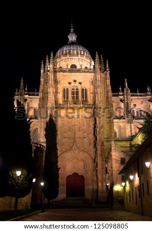 A side facade of the Salamanca Cathedral at night.