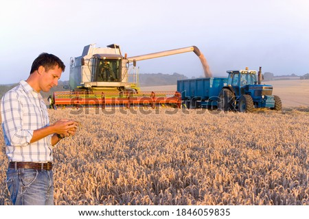A side profile shot of a farmer inspecting wheat in a field with a harvester and a blue tractor in background.