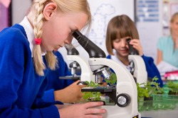 A sideview of a school girl with blonde hair in a laboratory looking into a microscope with her classmates and Teacher sitting in background