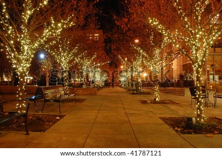 A sidewalk lined with trees and Christmas lights