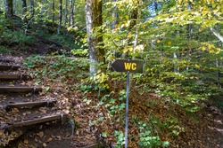 a sign goes to the toilet in a wooded area and wooden stairs