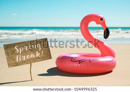 a signboard with the text spring break written in it next to a swim ring in the shape of a pink flamingo, on the sand of a beach, with the ocean in the background