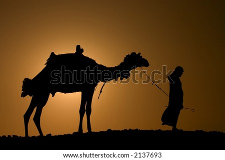 A silhoutte of a dromedary and bedouin - stock photo