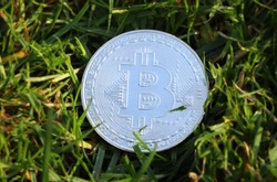 A silver bitcoin in the middle of grass.