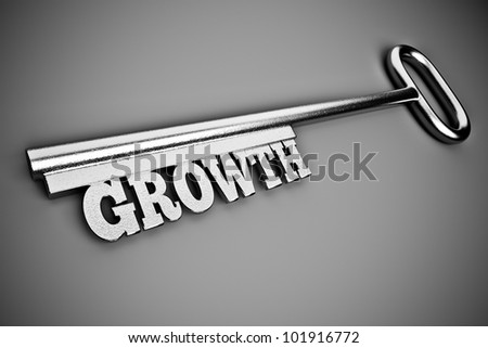 a silver key with word on grey, business concept