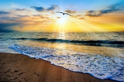 A Single Bird Flies into the Sun Rays of a Colorful Ocean Sunset Sky