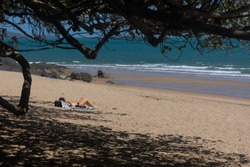 A single female sunbaking on beach of golden sand with the ocean and waves framed by the branches and shadows of a tree.