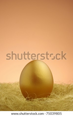 a single golden egg in the nest