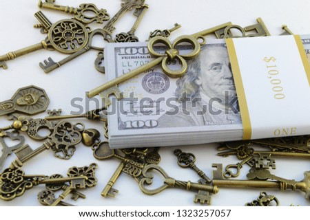 A single key is selected among many for the success to riches concept. #1323257057