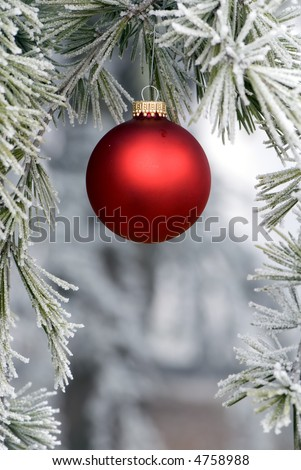 A single red bulb hangs from a frosted pine tree