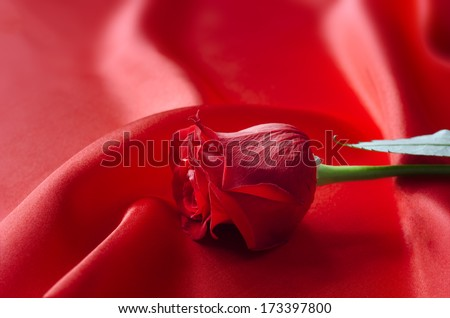 A single red rose as a symbol of love or Valentines Day, lying on red satin fabric which flows and drapes  in soft folds and ripples into soft focus in the background.