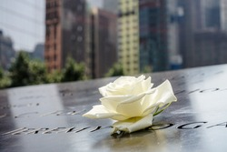 A single Rose that is left by someone's name at the 9/11 memorial in New York City