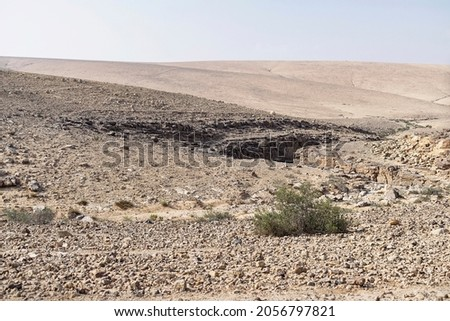 a single scraggly bush grows near a small canyon that cuts through the beige Judean Desert landscape in Israel with a pale blue sky in the background Stock foto ©
