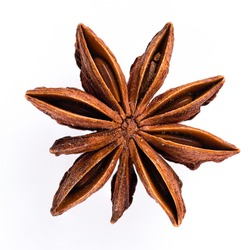 a single star anise isolated on white background, Star aniseed or Chinese star anise seed