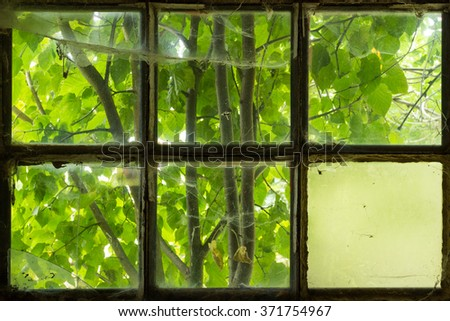 a six tiles window with background trees, contrasting colors #371754967