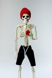A skeleton in a hat and shorts holds a red flower in his hand. Anatomy.