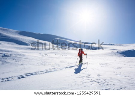 A skier in bright jacket is climbing the hill using skitour equipment. Ski Touring in mountains. #1255429591