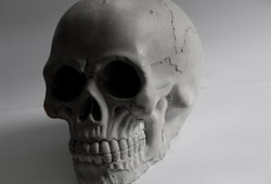 A skull encased in darkness