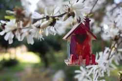A small and imperfectly painted wooden birdhouse hangs from a tree branch surrounded by white flowers.