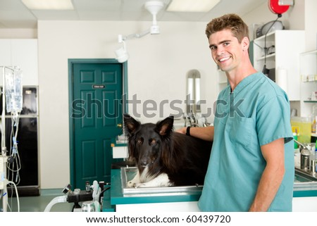 A small animal clinic with a dog on the surgery prep table