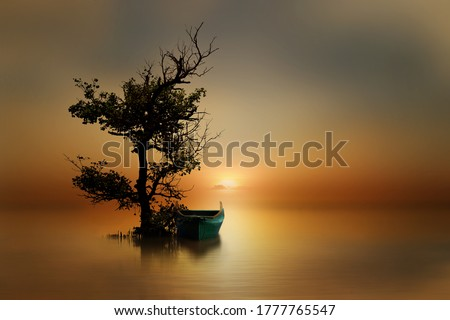 A small boat parked under a mangrove tree at the sunset