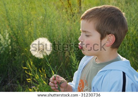 A small boy with big dreams, backlit with afternoon sun holding big dandelion-like plant in hand and blowing.