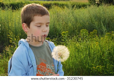 A small boy with big dreams, backlit with afternoon sun making a wish while holding big dandelion-like plant in hand.