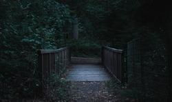 A small bridge in a dark forest in a dark horror like atmosphere