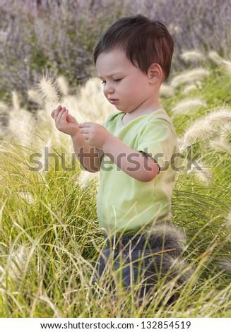A small child standing in a long grass in a Mediterranean garden.