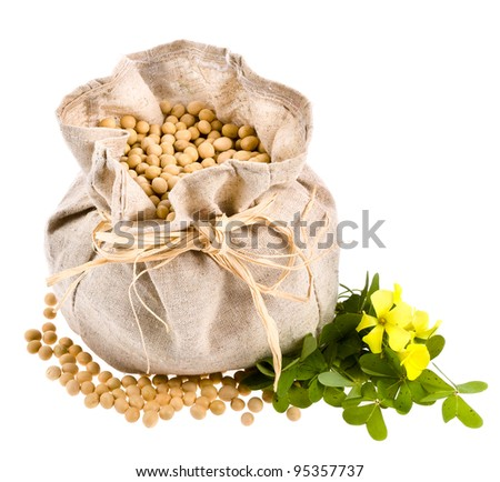 A small cloth bag with soybeans