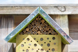A small ecological insects hotel bug house with a wild bee on the right. Nature and insect friendly hotel. Wild bees and other insects make a nest in one of the little holes. Wooden insect habitat