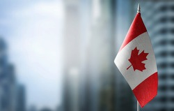A small flag of Canada on the background of a blurred background