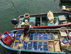A small floating market nearby Sai Kung Public Pier. Fishermen selling their real fresh seafood products on the boat