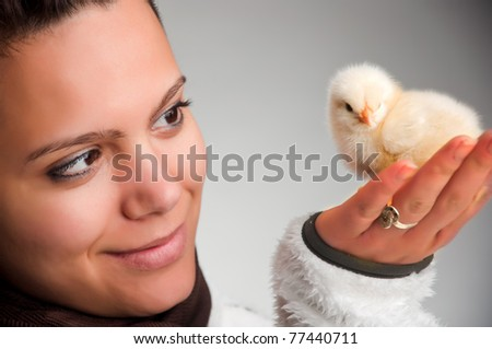 A small, fluffy, newborn baby chick in hands of a beautiful, modern woman