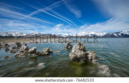 A small forest of tufa rises from the shores of Mono Lake