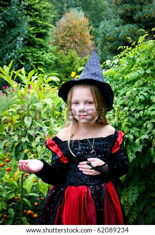 A small girl in a Halloween witch costume.