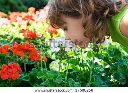 a small girl smelling some flowers - stock photo