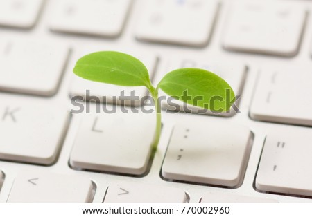 A small green plant growing from white computer keyboard / Green computing / Moral and Ethics in information technology #770002960