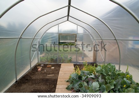A small greenhouse containing various vegetables
