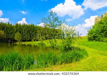 A small lake in beautiful summer landscape, Austria #432576364