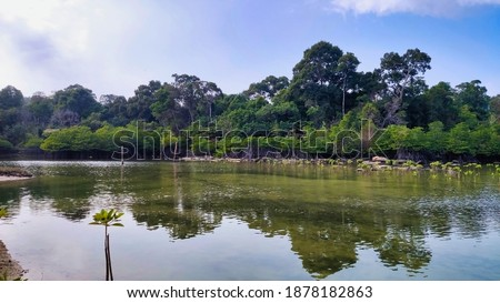 A small lake in the middle of the Koh Rong island. Tropical vegetation near the lake. Cambodia. South-East Asia Stockfoto ©