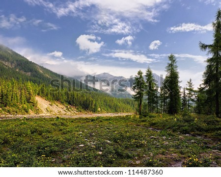 A small meadow in the valley of a mountain river. Eastern Sayan. Republic of Buryatia