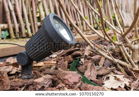 A small modern LED garden lamp, put in the ground of a flowerbed, filled with bark mulch. Lamp will illuminate a hydrangea plant which is beginning to grow at springtime.