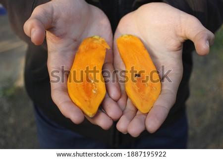A small papaya, strange but ripe, ready to eat.  Сток-фото ©