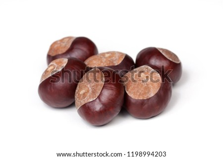 A small pile of chestnuts, conkers isolated on white background, closeup