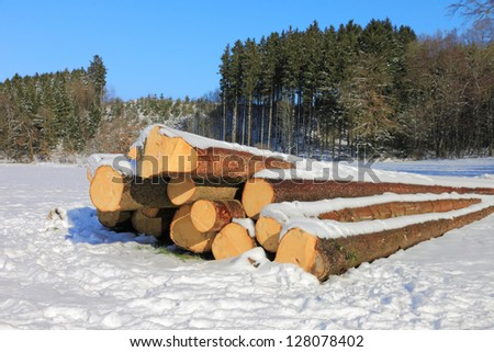 A small pile of logs in the snow on a sunny, cold winter day.